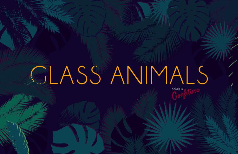 glass animals bannière jungle
